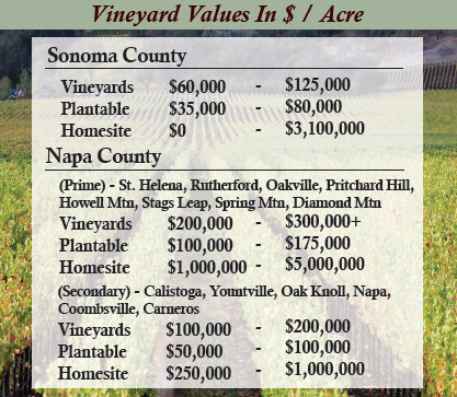 vineyard_values