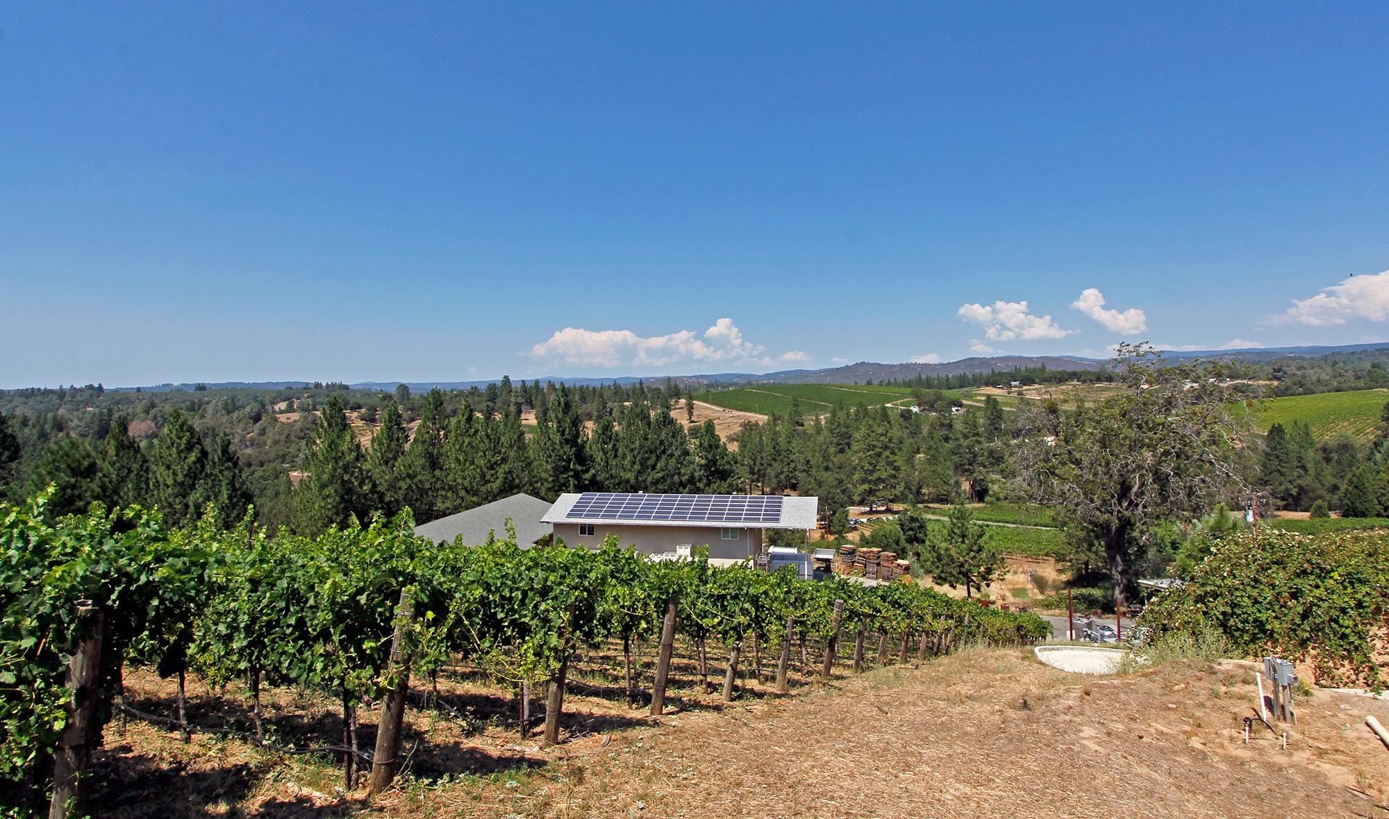 Gorgeous Vineyard Views, Fair Play AVA