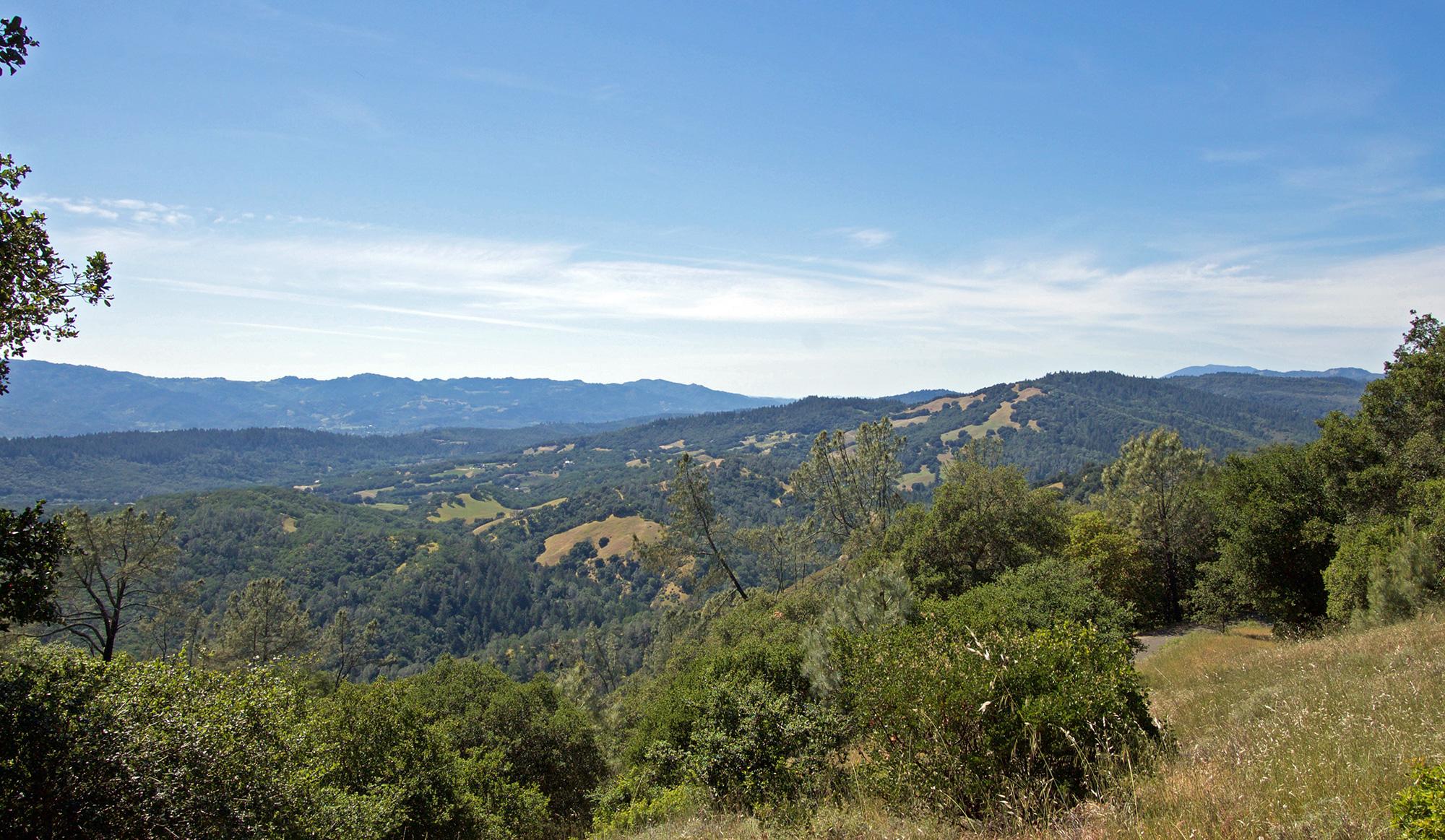 Afternoon Views of Napa Valley Mounatins