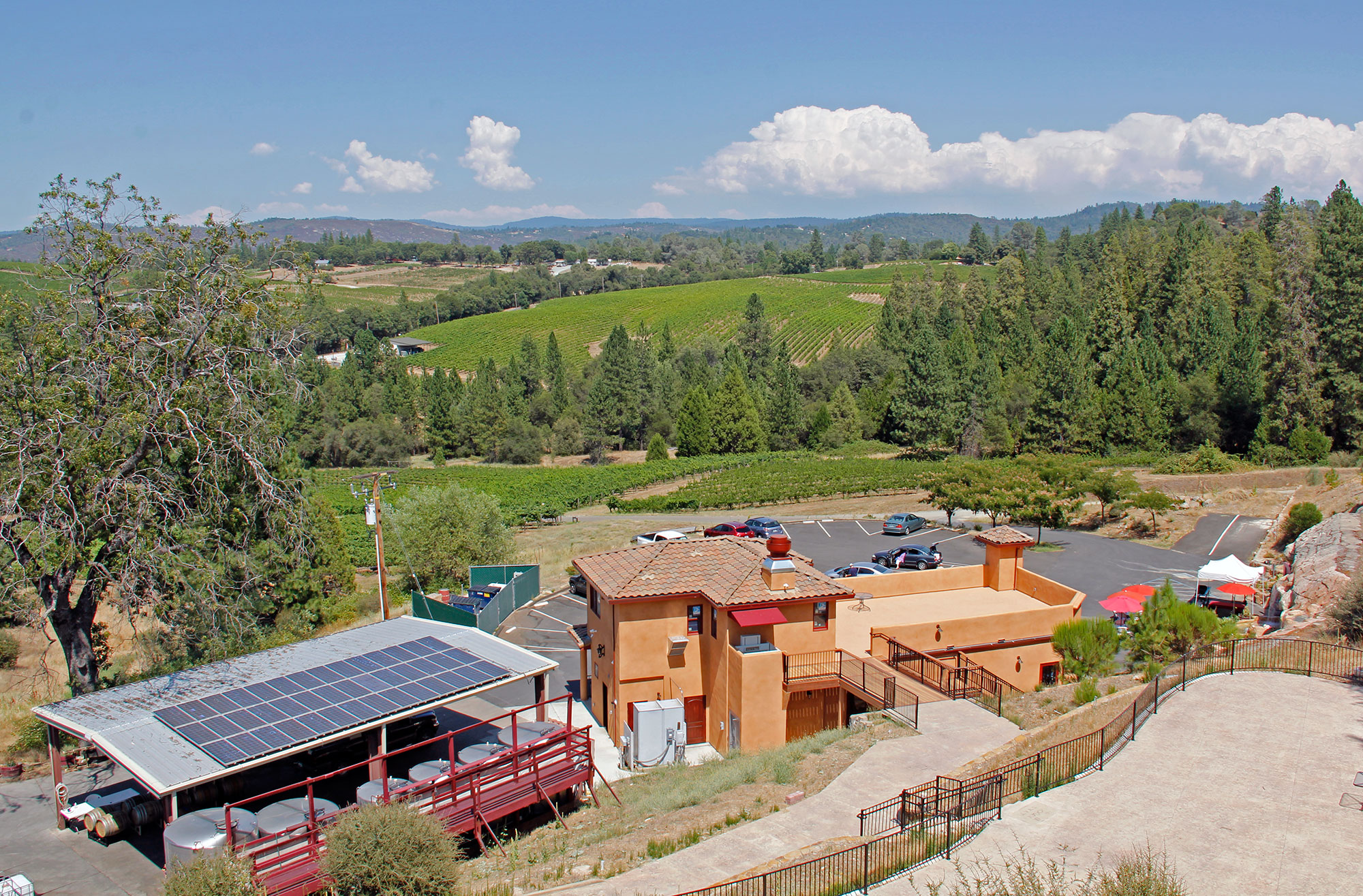 Spectacular Vineyard and Winery Setting in the Sierra Foothiils