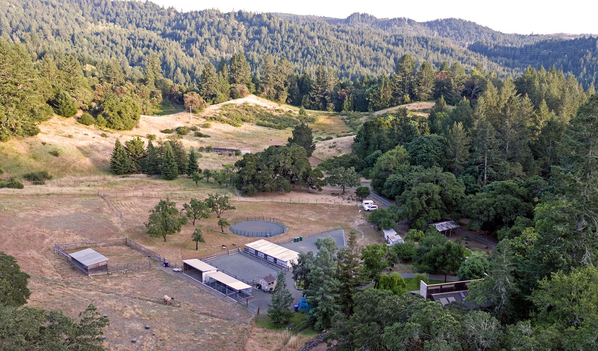 Mayacamas Mountain Retreat