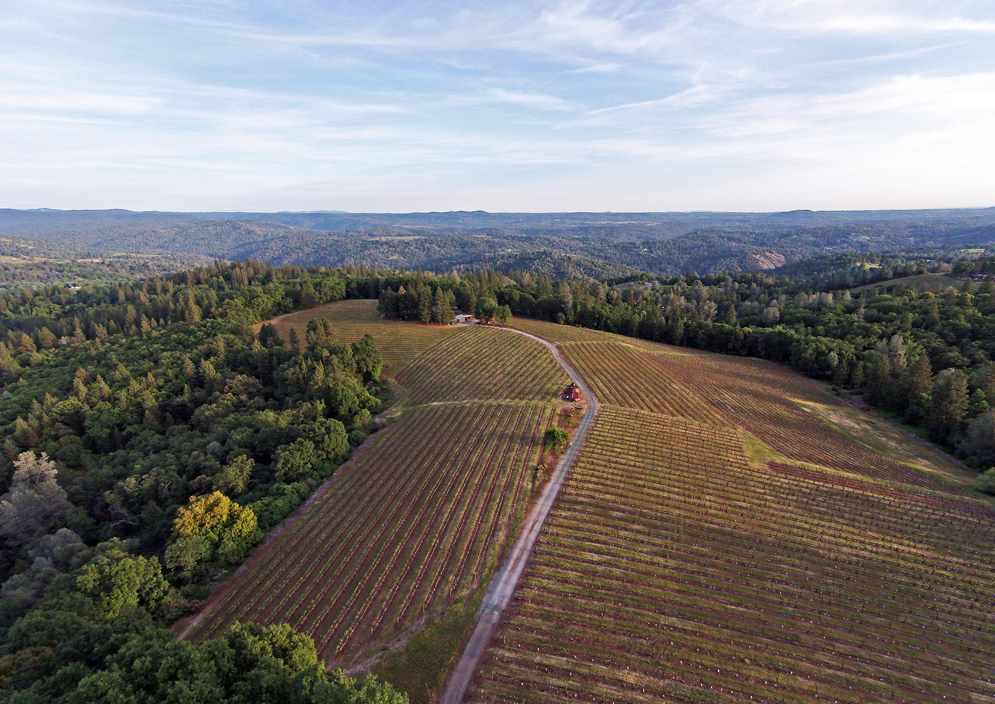 Sierra Foothills Winery For Sale
