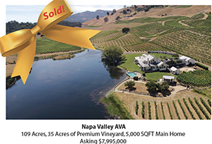 Napa Valley AVA Vineyard Estate