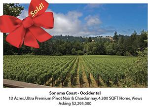 Sonoma Coast Pinot Noir Vineyard Estate