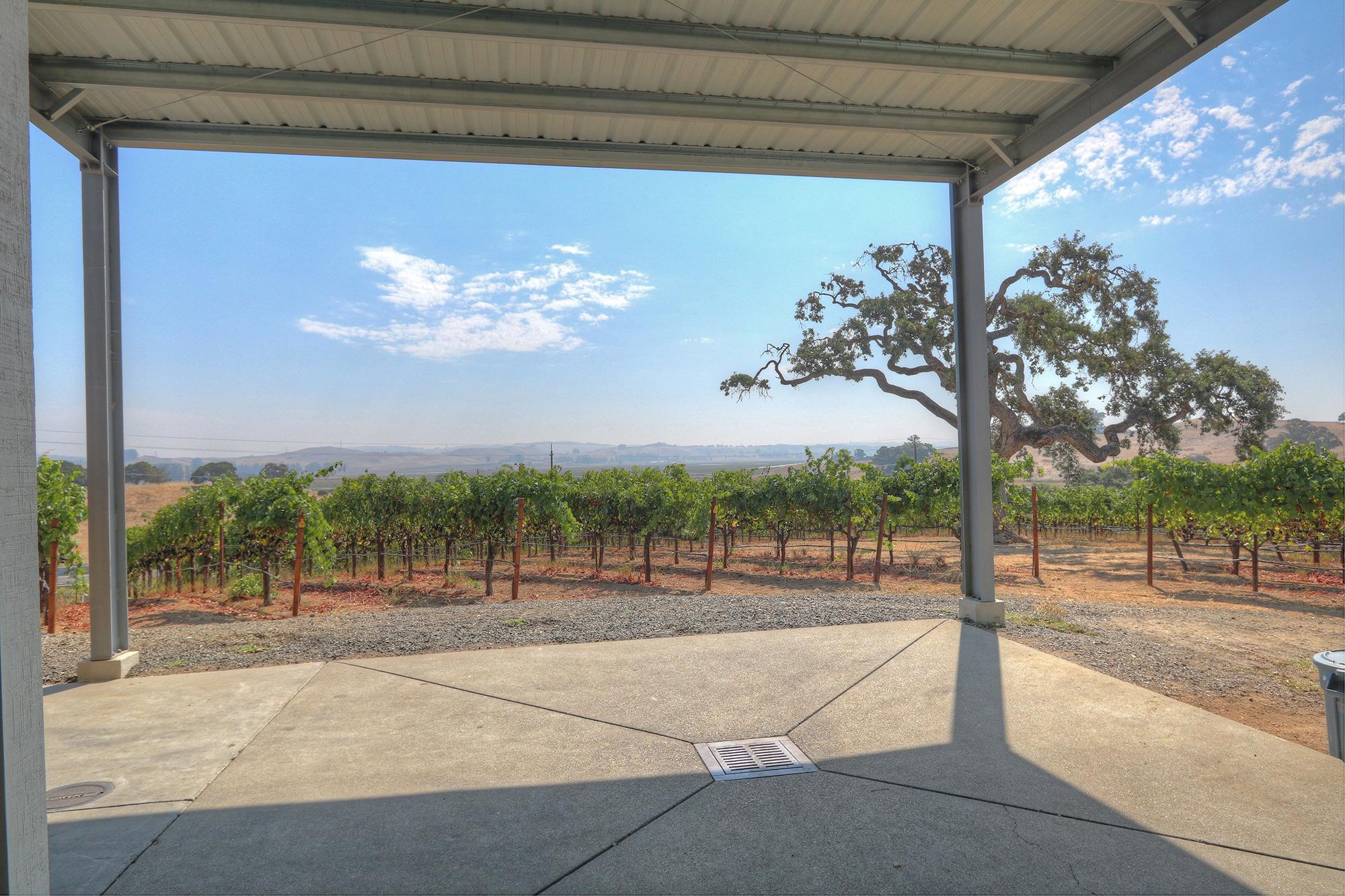 Sonoma Coast AVA Winery, Tasting Room and Vineyard