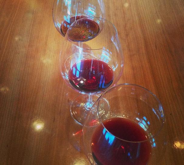 wine, consumers, increase, sonoma, napa, pinot noir, cabernet, real estate