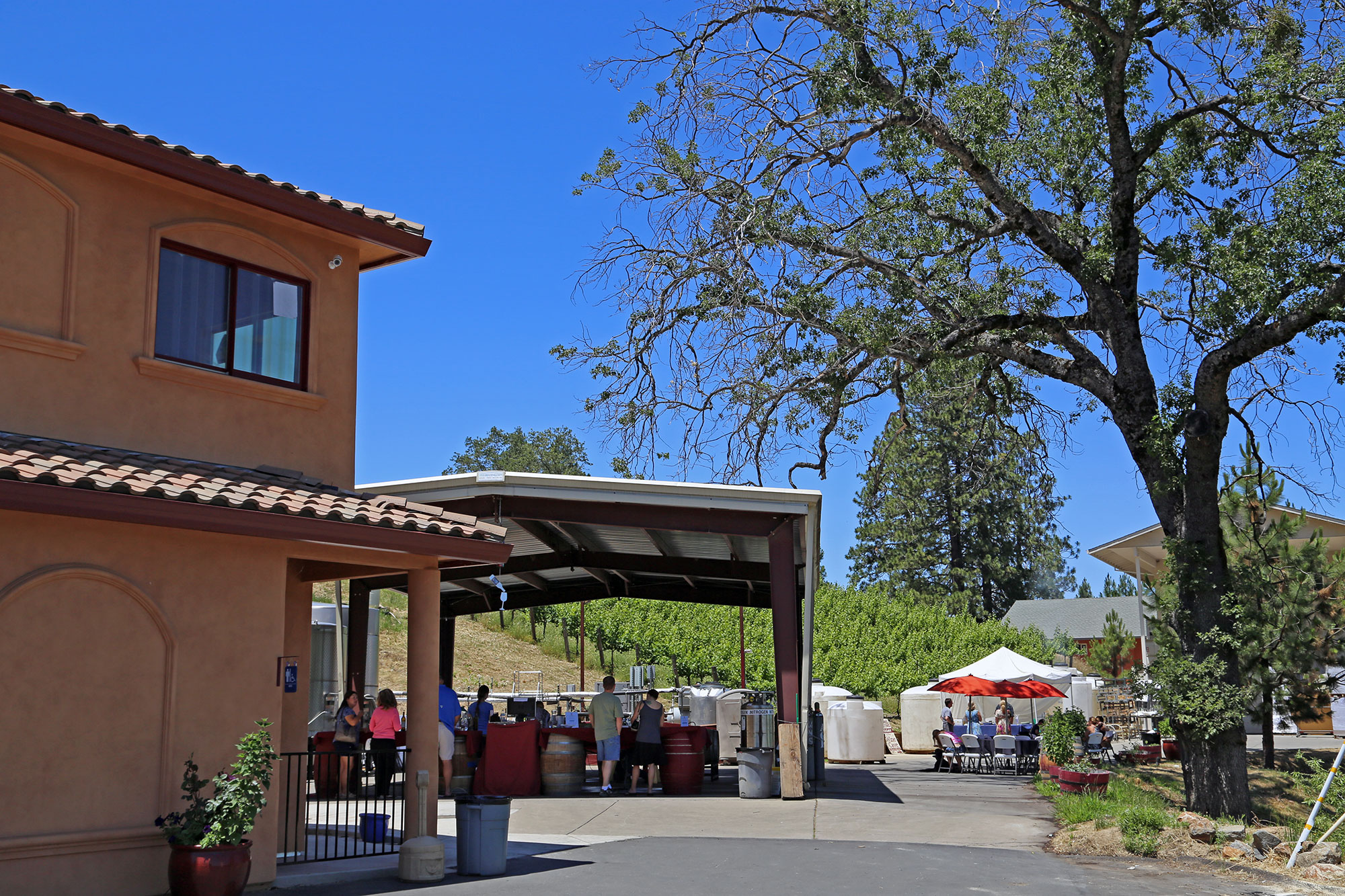 Winery Event in Fair Play, California.  Quality winery for sale.