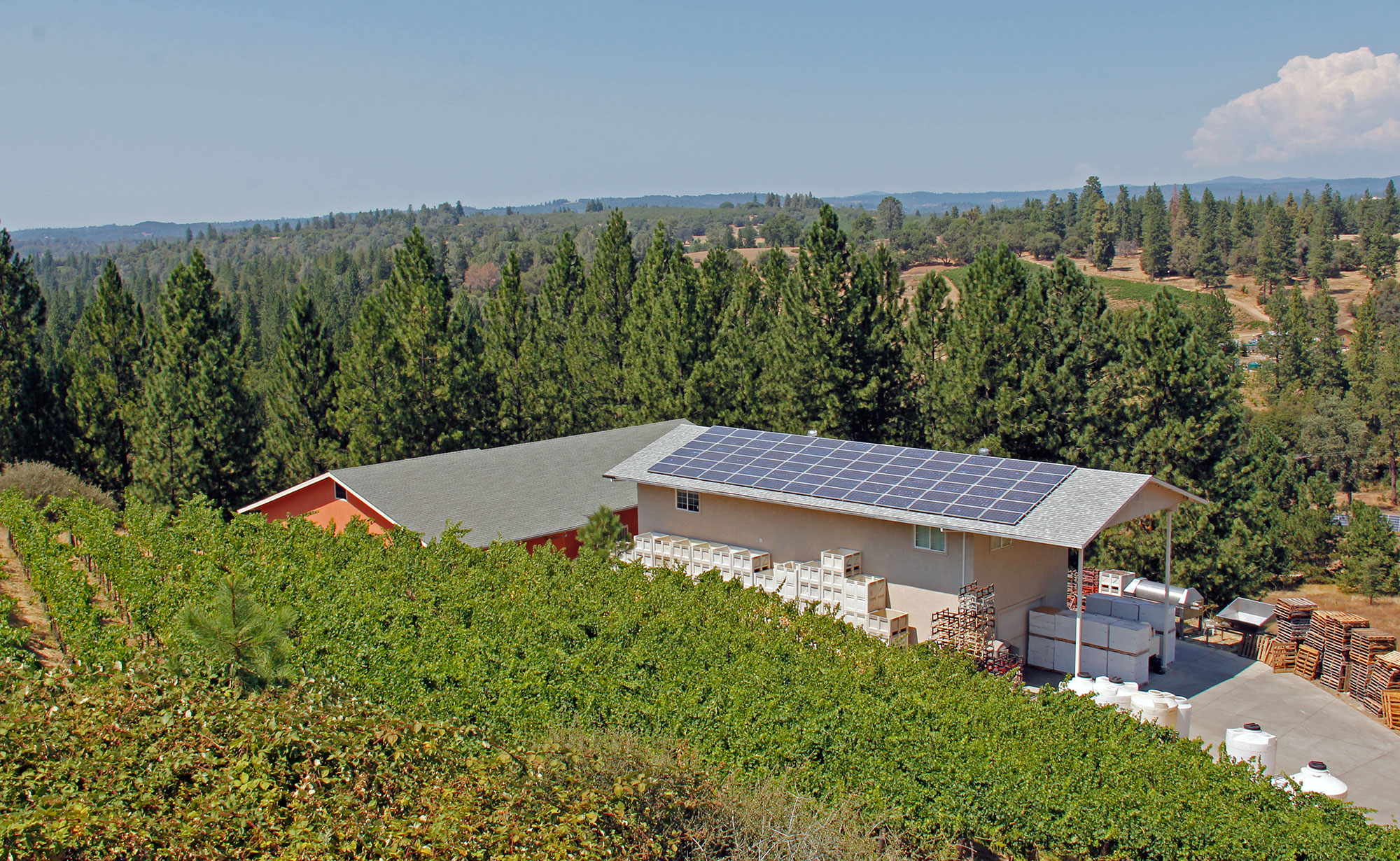 Solar powered winery in the Sierra Foothills