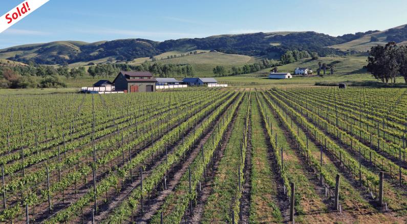 sonoma pinot noir vineyard sold