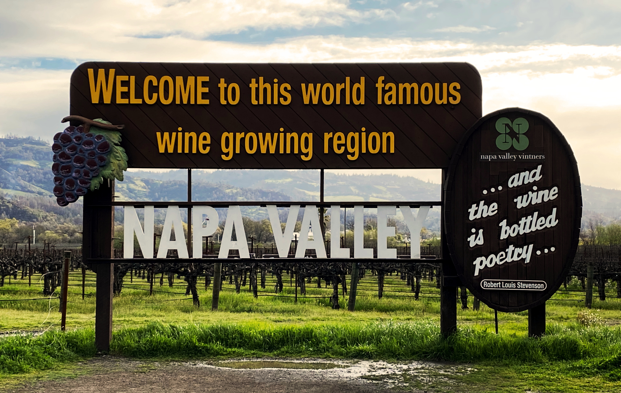 Napa Valley Vineyard Estate & Boutique High-End Profitable Wine Brand